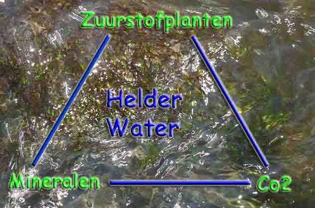 Vijver met groen water helder maken zweefalg in for Klein vijvertje aanleggen