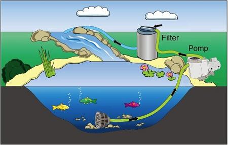 Vijverpompen een pomp in de vijver installeren for Natuurlijke vijver zonder pomp
