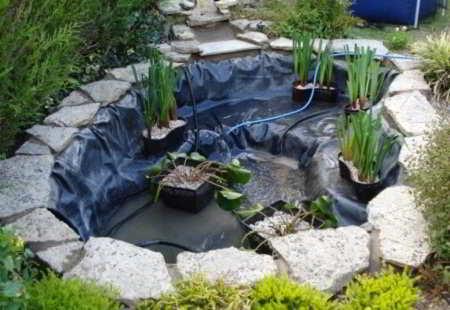 Beplantingsplan vijver op juiste wijze vijver aanplanten for Vijverpomp voor grote vijver