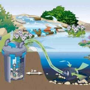 Vijverpomp werking soorten pompen opstelling en onderhoud for Pompe pour bassin poisson exterieur