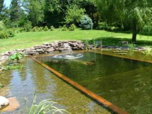Zwemvijver met ondiep deel